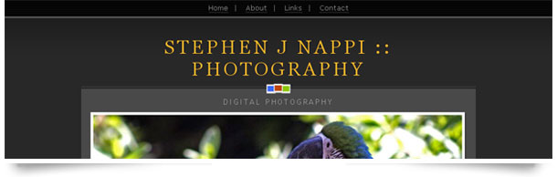 Stephen J Nappi Photography
